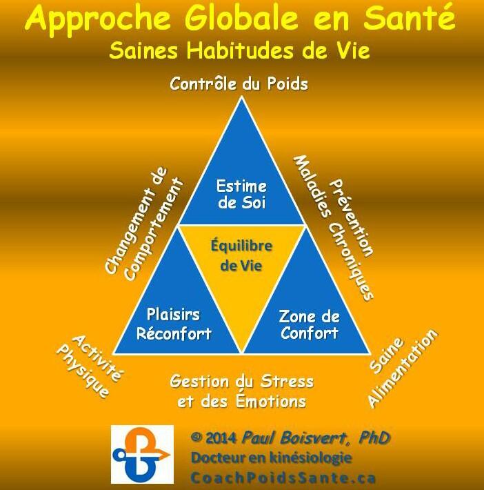 pyramide-santé-globale-carré